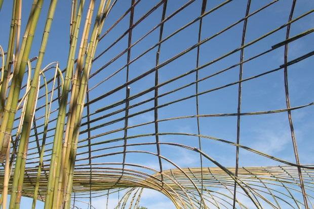 Aménagements extérieurs - créations en bambou - bambou créations
