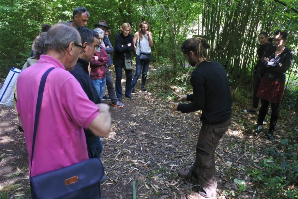 Formation quel bambou pour quel jardin - Design de plantation et notions de permaculture - Bambou Créations