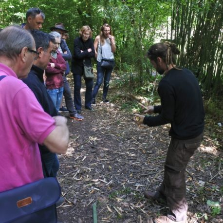 Formation «Quel bambou pour quel jardin ?»
